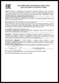 Пример бланка «Декларация соответствия на мороженое»