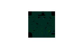 The body shop: логотип