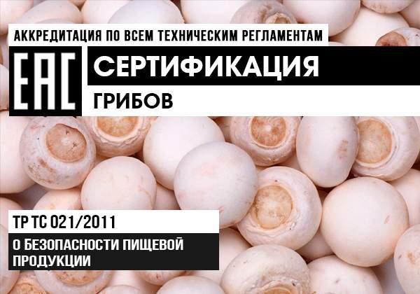 Сертификация грибов баннер