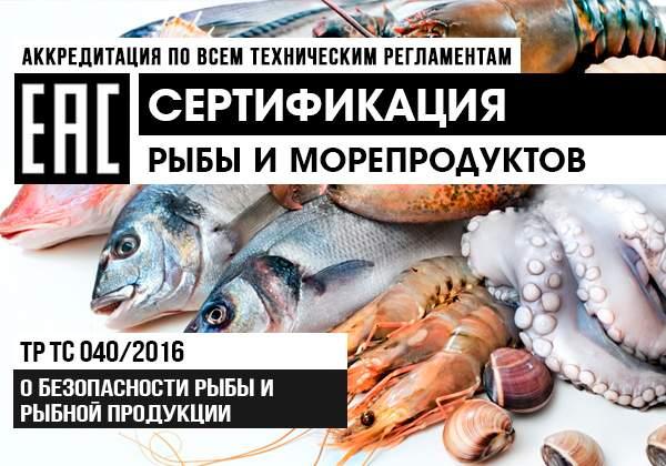 Сертификация рыбы и рыбной продукции баннер