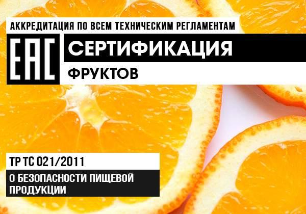 Сертификация овощей и фруктов баннер